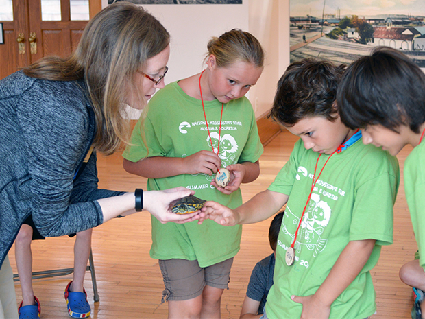 Home School Day: Amphibians and Reptiles