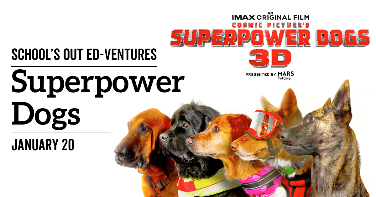 School's Out Ed-Ventures - Superpower Dogs