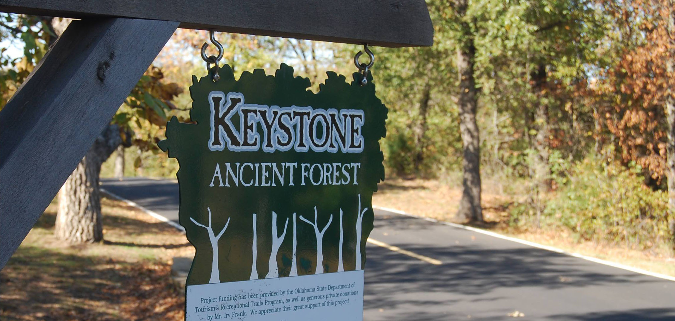 Warm light on a fall day at Keystone Ancient Forest near Tulsa, Oklahoma.