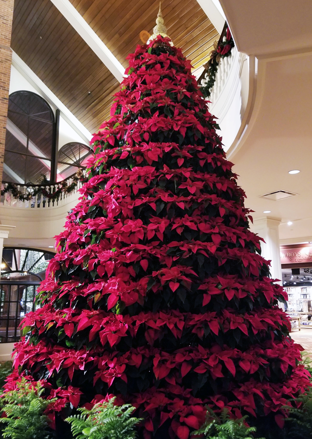 A tree made entirely of poinsettias inside the hotel.