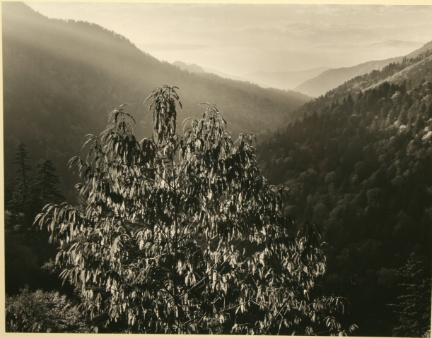 Great Smoky Mountains (1948) by Ansel Adams