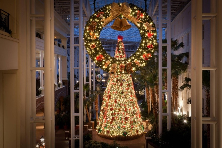 A view of the 48 ft tall tree.
