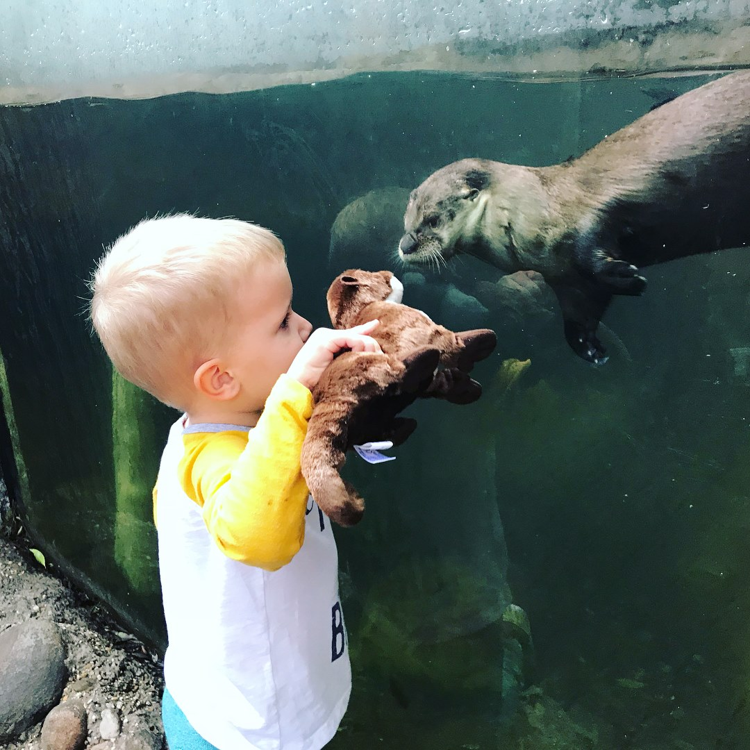 Palm Beach Zoo : Florida's Top-rated Zoological Experience