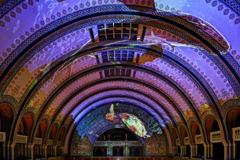 Grand Hall Light Show image