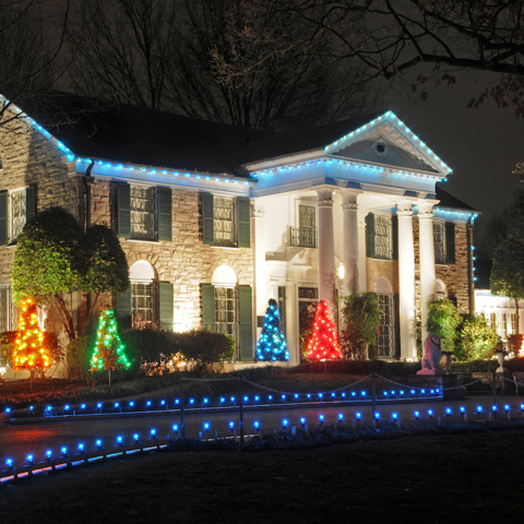 Live shot of Graceland 1
