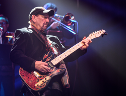 James Burton of Elvis