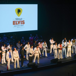 The top ten are announced during the Ultimate Elvis Tribute Artist Semifinal on August 12, 2014.