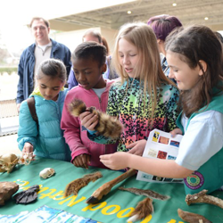 Scouts learned about wildlife, safety, music and more at Scouts Day.
