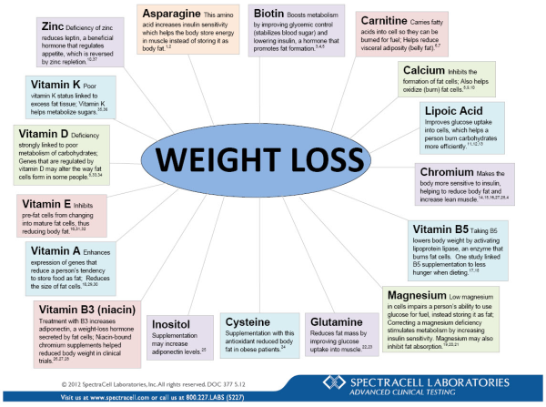 Weight Loss Document