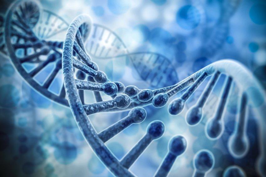 DNA Strand 2.jpg