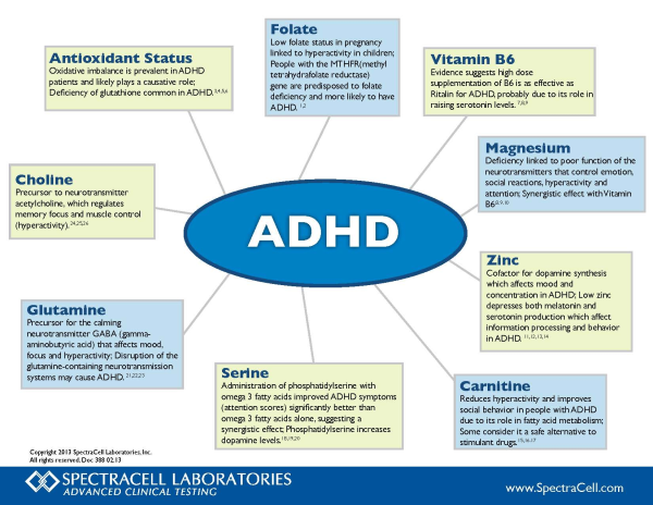 ADHD Disease wheel resized 600
