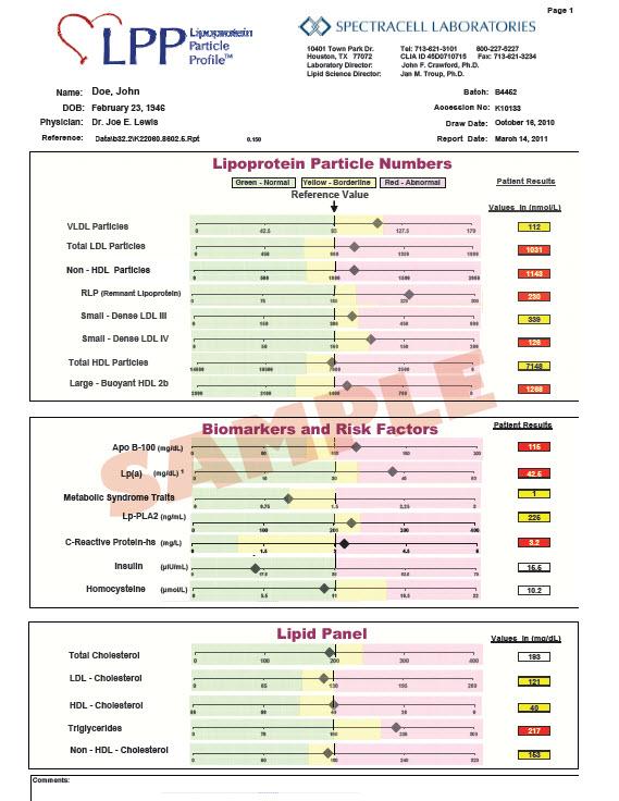 LPP Sample Test Report