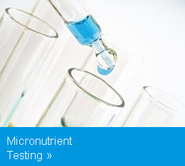 Micronutrient Testing