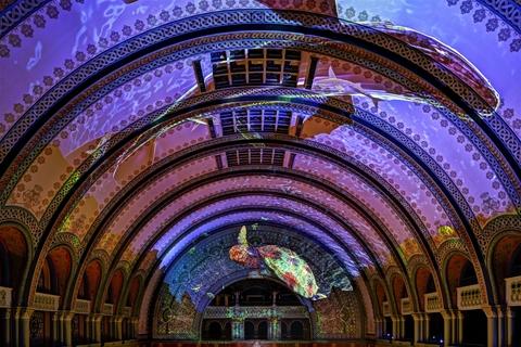 Grand Hall Light Show image