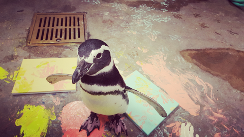 Painting with Penguins