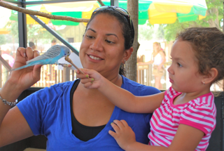Mom and child feed seeds to a parakeet.