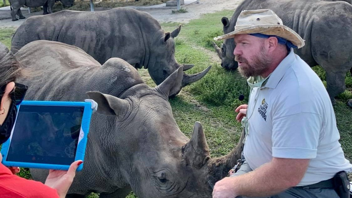 Wildlife keeper in bed of pickup truck talking about rhinos for a virtual program.